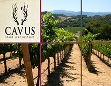 Cavus Vineyards